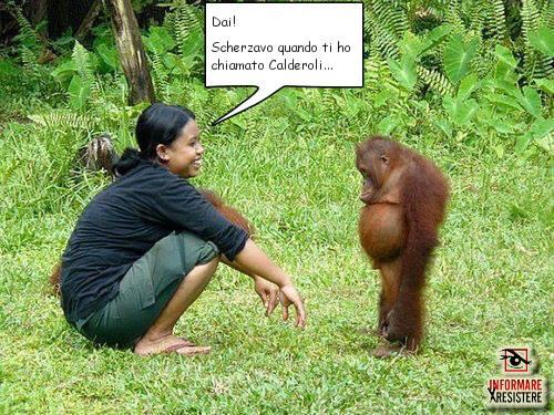 true orango